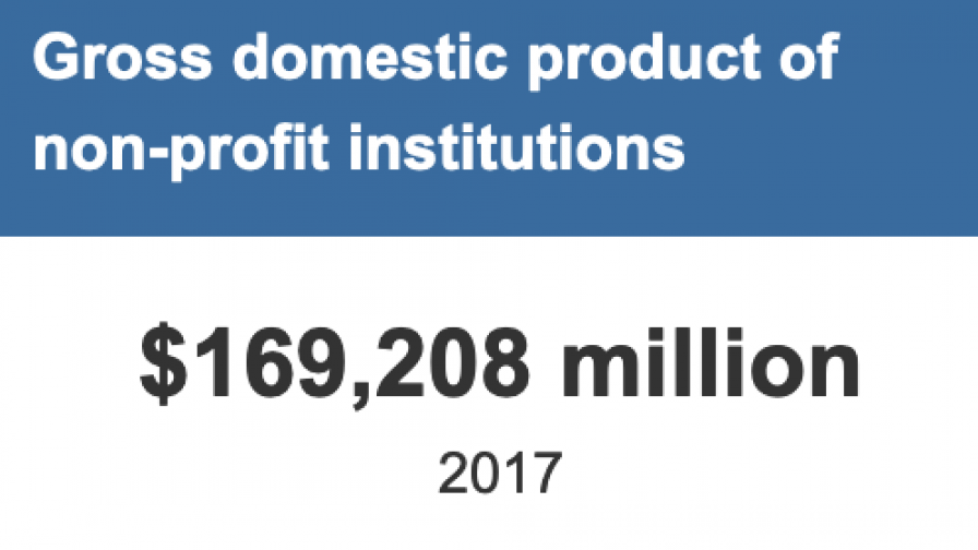 Gross domestic product of non-profit institutions  $169,208 million  2017